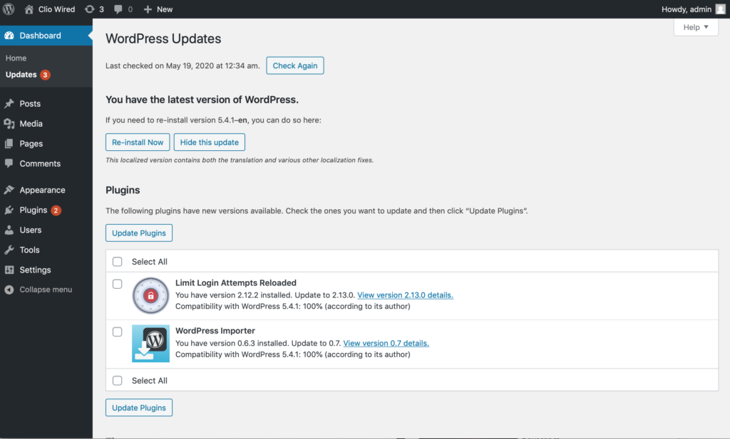 screenshot of the interface to update WordPress themes and plugins